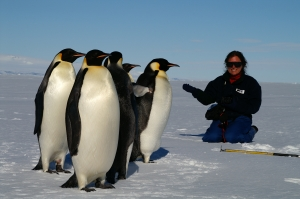 Journalist Veronika Meduna sits with miscrophone next to 5 emperor penguins